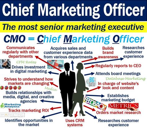 What is a Chief Marketing Officer (CMO)? - Definition and