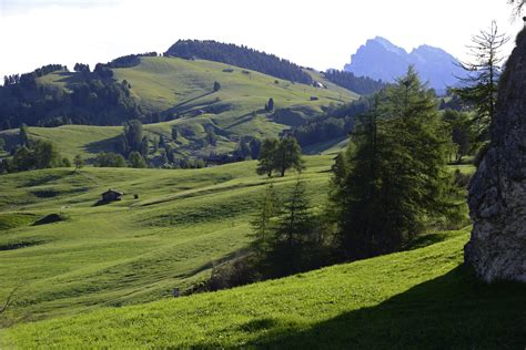Seiser Alm (9)   Seiser Alm   Pictures   Geography im